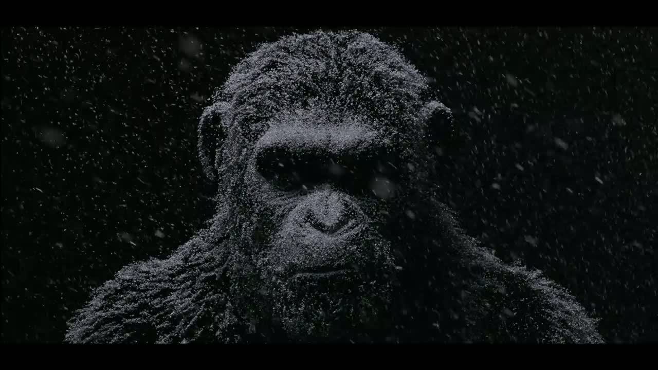 War for the Planet of the Apes – Planeta Maimuţelor: Războiul 2017